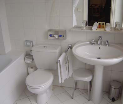 Space Saving Toilets For Small Bathrooms