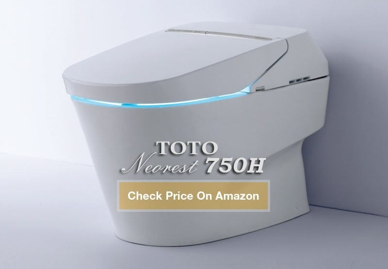 TOTO Neorest 750H Toilet – $10000 High-End Toilet - Toilet Found!