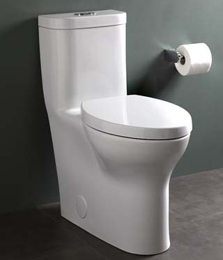 What Makes The Best Flushing Toilet Worth Your Money - Toilet Found!