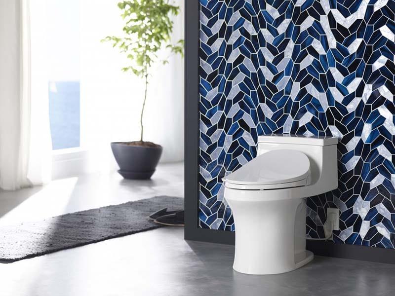 KOHLER San Souci Toilet With Bidet Seat