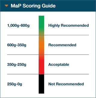 MaP Scoring Guide