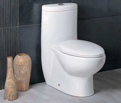 whitehaus-one-piece-toilet-featured