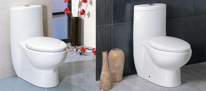 Whitehaus One Piece Toilet